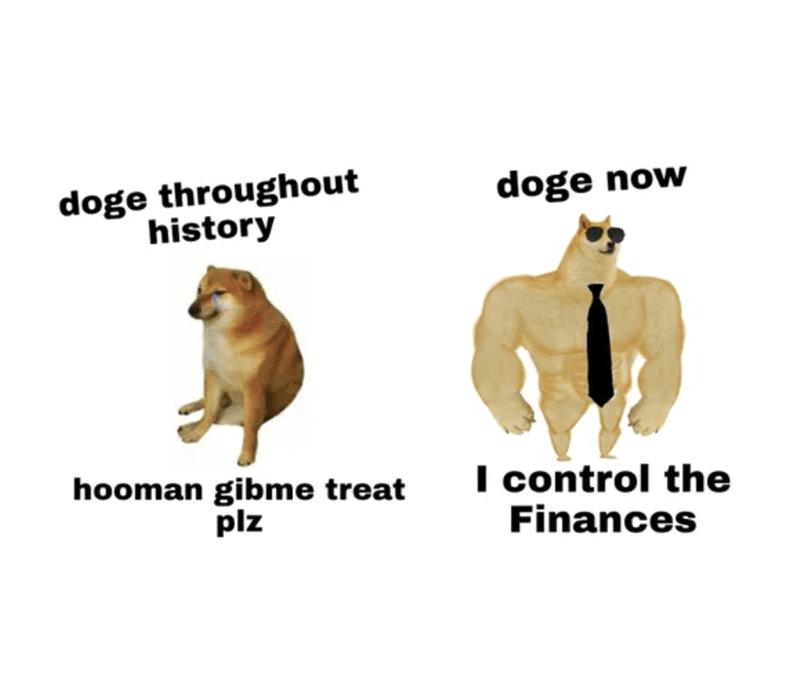 dogecoin example meme